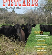 May-June 2012 PW Cover