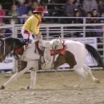 Day-Backwards-on-Horse