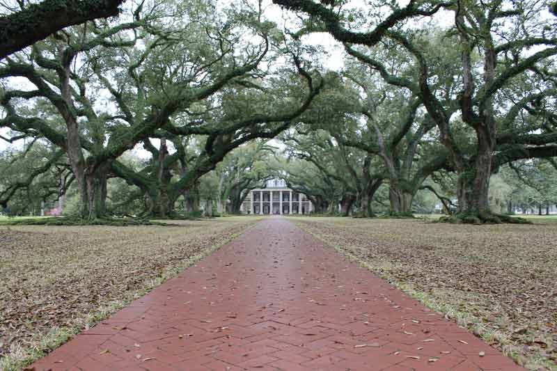 Oak Alley Plantation located about an hour from New Orleans