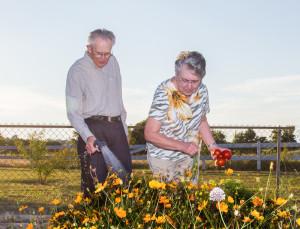 DYK-Winston-Tanya-Gardening