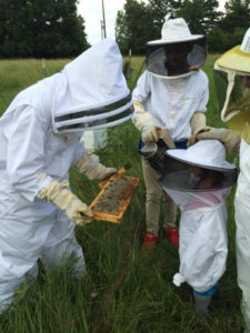 Dana Grant working with future beekeepers
