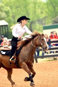 Talent-Auburn-Rider-White