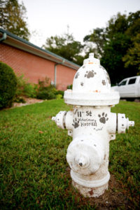 business-firehydrant
