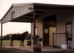 day-jack-outside-barn