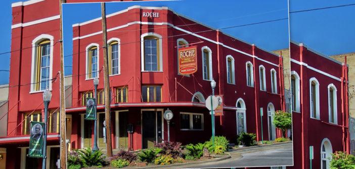 Texas Treasures: Roche Building