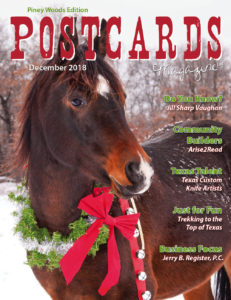 December 2018 PW Cover