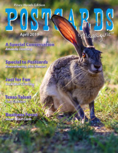April 2019 PW Cover