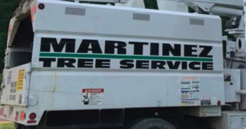 Business Focus: Martinez Tree Service