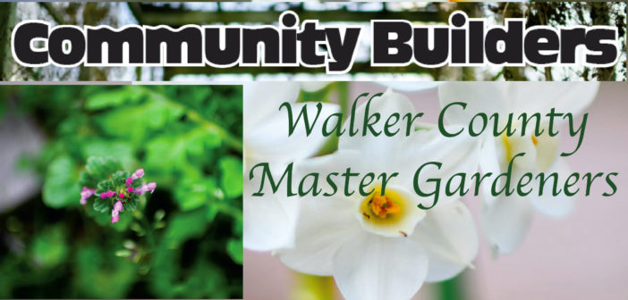 Community Builders: Walker County Master Gardeners