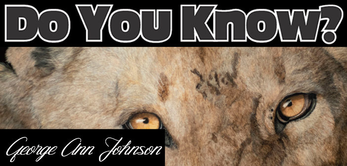 Do You Know? George Ann Johnson